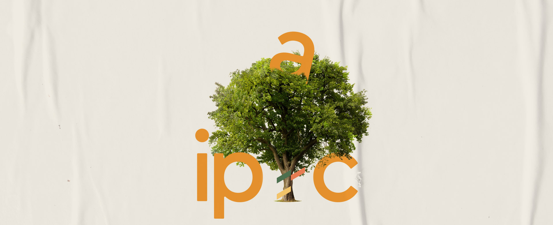 ipac-banner-3